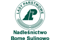 logo-lasy2